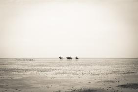 Cuxhaven-2. Zaiaragonphoto